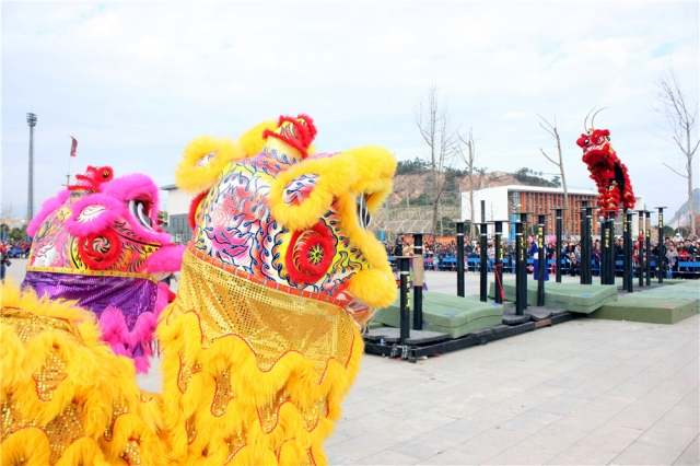 在宝马雪狮队表演的时候,深圳忠华舞狮队的队员们披着狮被在一旁静静观看。