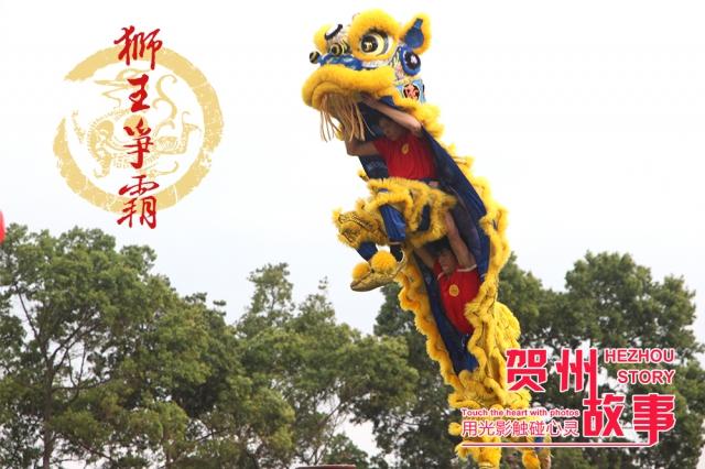 【贺州故事】狮王争霸