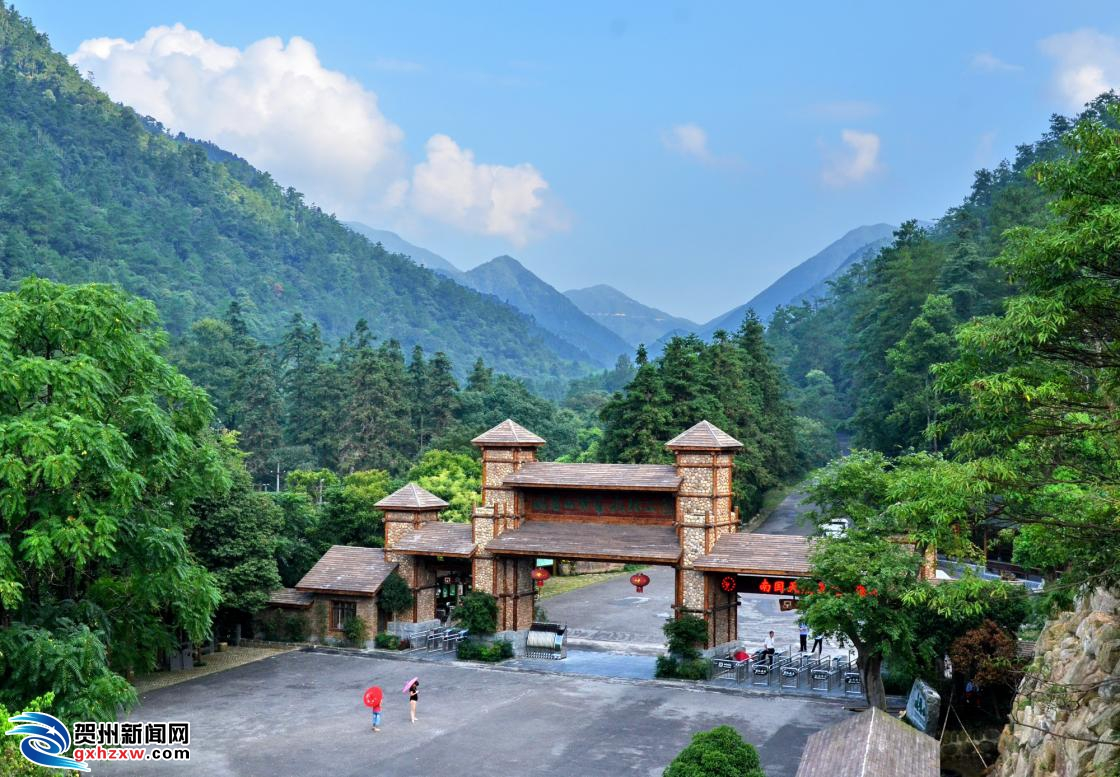 【治国理政进行时·广西篇】贺州:造林护林矗立绿色支柱