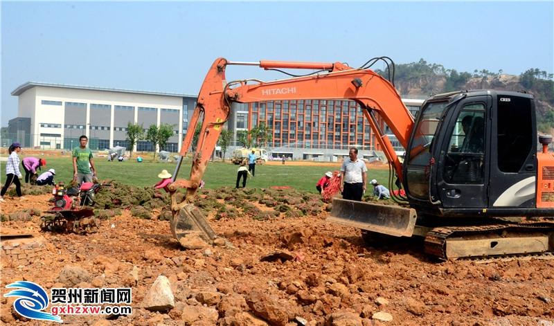 平桂区文体中心建设热火朝天