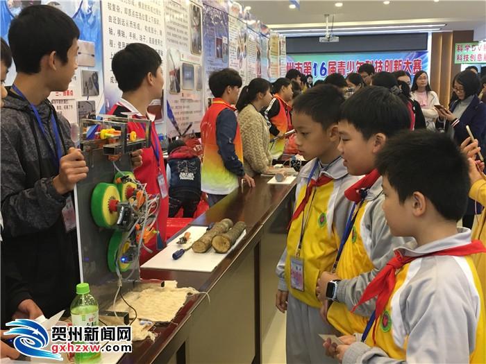 贺州市青少年科技创新大赛圆满闭幕