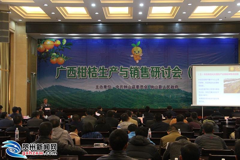 钟山县召开广西柑桔生产与销售研讨会