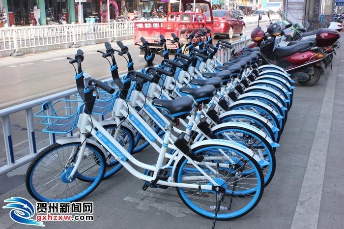 共享单车驻入贺州 开启全民低碳自由行