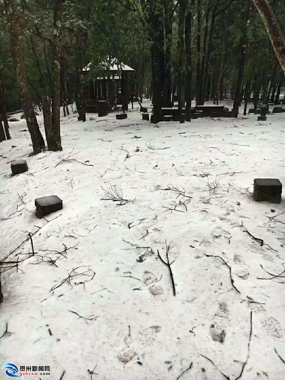 姑婆山旅游区迎来2018年第一场雪