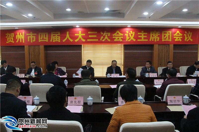我市召开第四届人民代表大会第三次会议举行主席团第一次会议