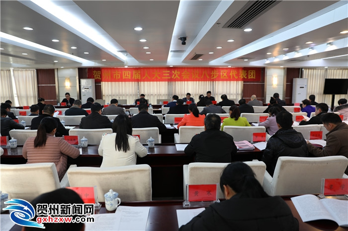 贺州市四届人大三次会议各代表团分组审议《政府工作报告》