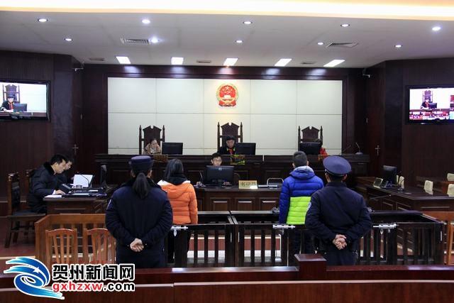 贺州微信红包赌博案一审开庭 涉案赌资高达100多万元