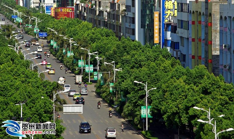 贺州:生态健康产业方兴未艾