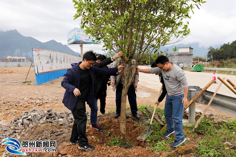 千人志愿服务 助力美丽中国
