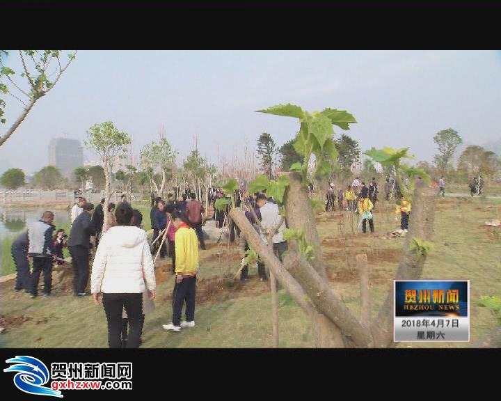 八步区一季度植树造林五万亩