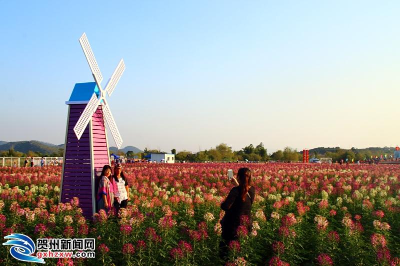 广东籍游客在贺州市旅游景区可享受门票5折优惠