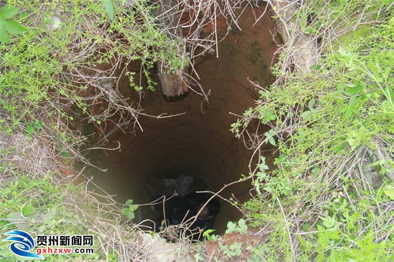 贺州一老人抄近路去亲戚家不慎掉入6米深枯井