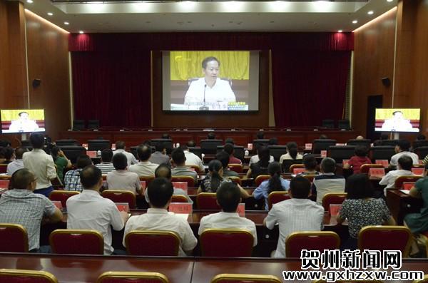 平桂四家班子领导收看《百色市委常委班子专题民主生活会纪实》