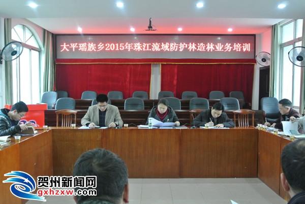 大平瑶族乡召开2015年珠江流域防护林造林业务培训会