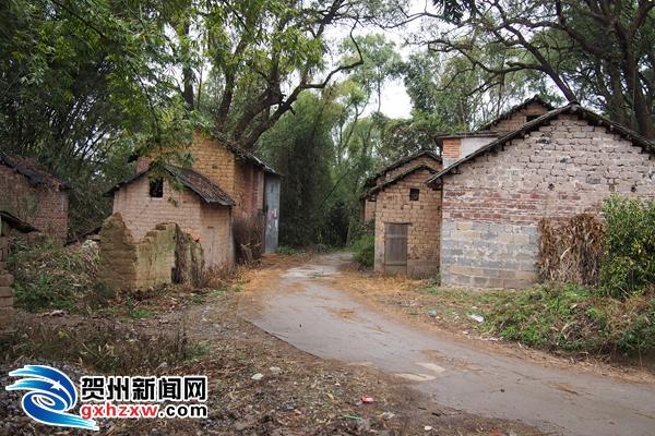 生态乡村试点 让农村旧貌换新颜