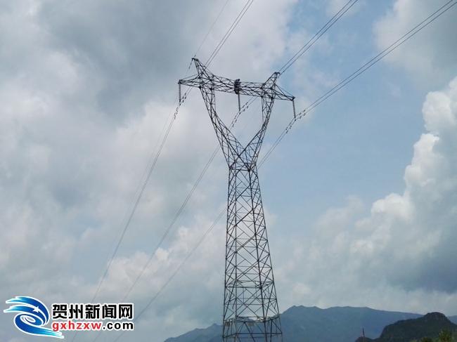 贺州供电局:消除线路杆塔鸟害隐患 确保迎峰度夏供电