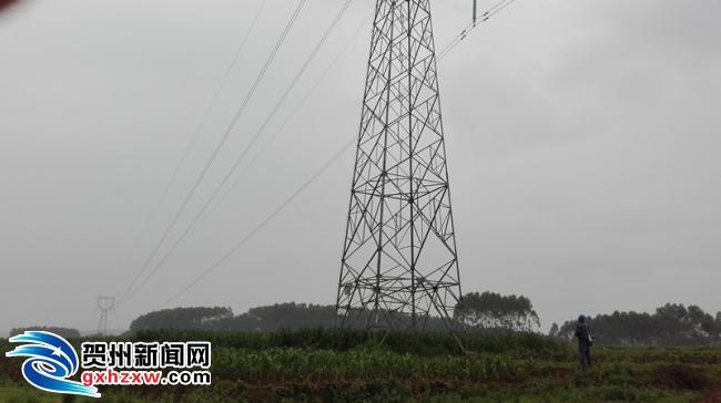 """贺州供电局:加强输电线路巡视排查 护航全国""""两会""""保供电"""