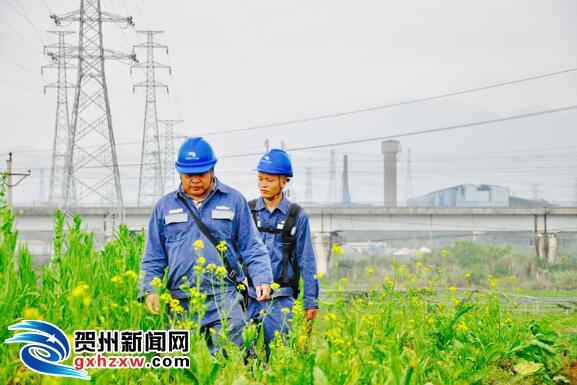 """贺州供电局:""""双节""""保供电贺州网区运行安全平稳"""