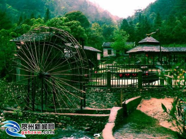 生态长寿品牌引来八方客 贺州市旅游市场似火红