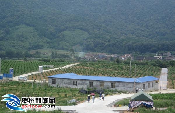 钟山现代特色农业(核心)示范区完成投资逾亿元