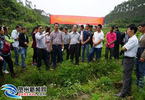 钟山首批水果产业新型职业农民走进田间课堂