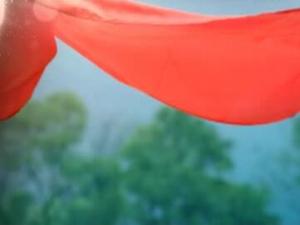江上·夏之舞