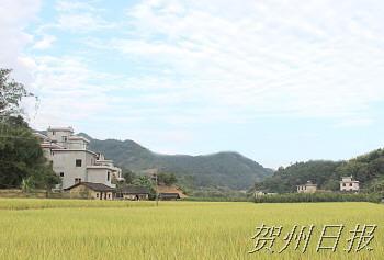 文明新风绘就美丽乡村
