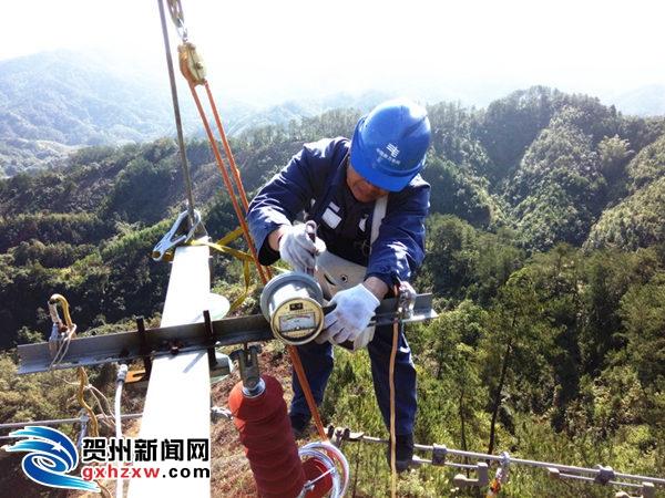 贺州供电局:强化线路消缺 做好春节保供电准备工作
